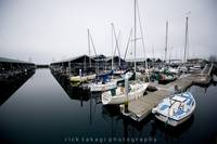 Edmonds harbor