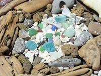 Coastal Beach Rock Garden Seaglass Shells Seaglass