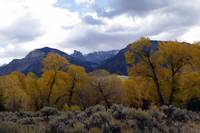 fall on the Shoshone