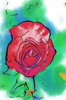 Red Rose Bloom by Kirt Tisdale