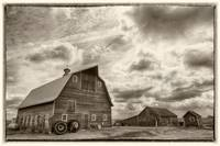 Spring on the Farm | Jackson, Minnesota