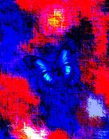 Blue Butterfly Red Abstract 2