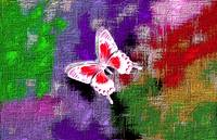 Glowing Red and White Butterfly On Colorful Abstra
