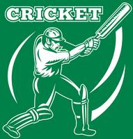 cricket player batsman batting