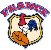 France Rugby Rooster cockerel ball and shield