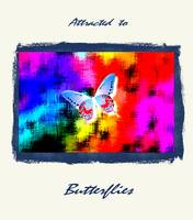Red White Blue Butterfly On a Colorful Abstract wi