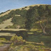 Lucas Valley Oak Art Prints & Posters by Deni Wetsel