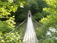Suspension Bridge at Fall Creek Falls State Park