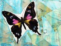 Buterfly Mixed Media