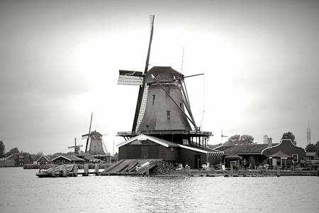Timeless Dutch Windmills