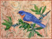 Bluebird Summer by Sharon Himes