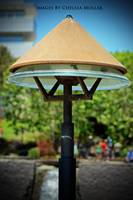 Lamp in the botanical garden