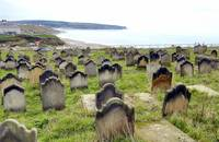 The Dead With a View: Whitby Abbey