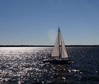 Sailing on the Bay2
