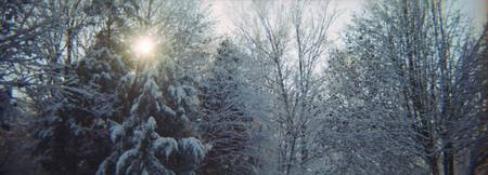 Winter Scene Panoramic