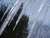 Massive Row Of Icicles