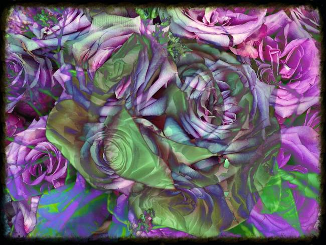 Rose Abstraction
