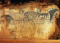 Spotted Horses of Pech Merle Cave