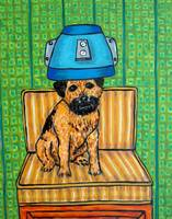 Border Terrier at the salon