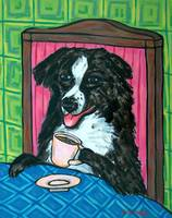 Australian Shepherd at the Coffee Shop Cafe