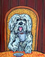 Havanese at the Cafe