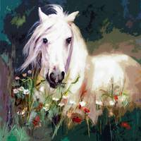 White Horse in Poppies Modern Equine Art