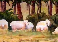 Sheep in the Meadow Art Painting Landscape