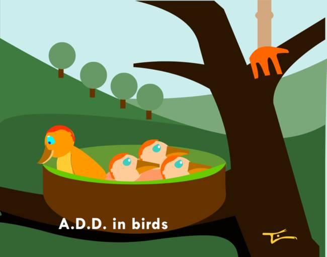 A.D.D. in the Bird World
