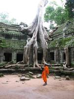 Buddhist Monk at Angkor Thom