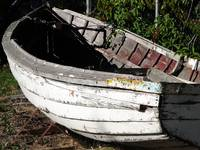 Rowboat in Yard_1