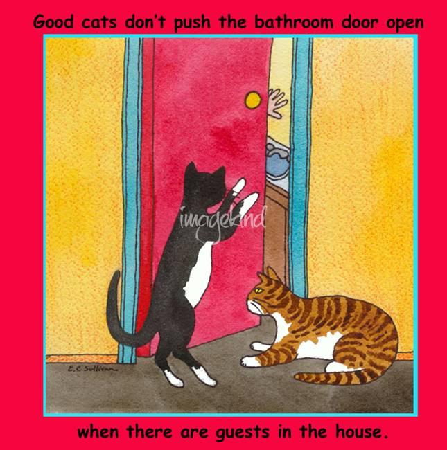 Humor Bathroom Artwork For Sale On Fine Art Prints