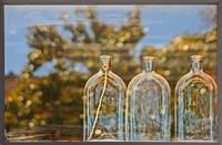 Three Bottles in Window