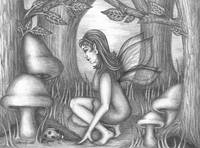 Fairy in the Wood pencil