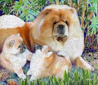 ANN RATHMEL- COMMISSION MOM AND PUPS