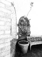gazebo pen and ink