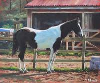 Brown and White Horse by Stable