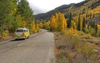 Fall Colors and a Yellow VW