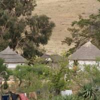 Zulu/Xhosa Huts, South Africa Art Prints & Posters by Jonathan Jeffrey