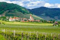 Wine Country,Wachau Valley
