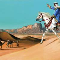 Arabian Horse Art Prints & Posters by Shelley Ann Jackson & Jeff Crosby
