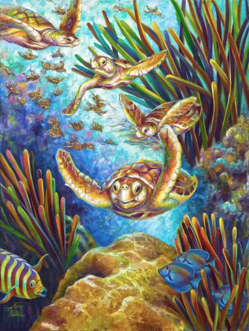 Four Loggerhead Sea Turtles
