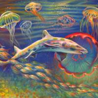 207-LeopardSharkJellyfish-Morgret by Nancy Tilles