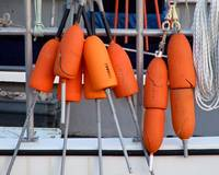 Orange Buoys