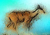 Kudu by the water (Chalks)