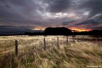 Aberlady sunset_MG_0148