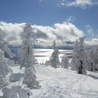 """""""Ski Tahoe"""" by ErickaPayne"""