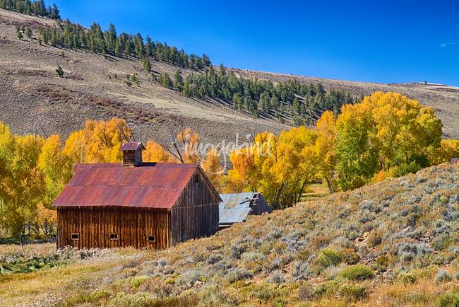 Colorado Rustic Rural Barn with Autumn Colors