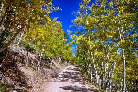 Back Country Road Take Me Home Colorado