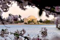 Thomas Jefferson Memorial CB5