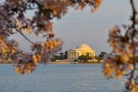 Thomas Jefferson Memorial CB20